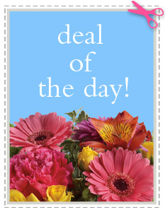 Deal of the Day in Amarillo TX, Le Fleur Florists & Gifts